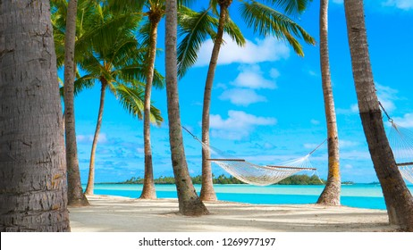 COPY SPACE: Gentle summer breeze blowing along the exotic coast in Thailand swinging the rope hammock under the palm trees. Cinematic shot of an empty hammock on untouched tropical beach in Maldives.
