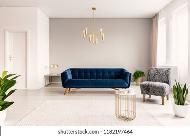 Copy space living room interior with a dark blue couch, a gray armchair and gold accents. Real photo.