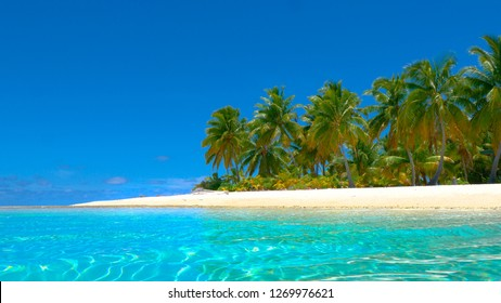 COPY SPACE, LOW ANGLE: Gentle glassy ocean waves roll past the pristine paradise beach in the vast Pacific. Picturesque shot of palm tree canopies swaying on the white sand beach in the summer breeze.