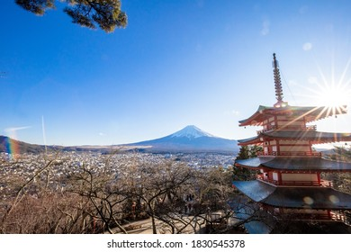 Copy Space on Beautiful view of mountain Fuji and Chureito pagoda, Fujiyoshida, Japan. Backgound of Fuji Autumn leaves during sunset with clear blue sky.