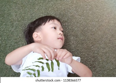Copy space and Portrait little Asian kid sleeping on the green field and holding green leaves in his hand. The little Asia boy sleep in the park. Concept of dream , future and happiness kid.