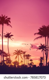 Copy space of silhouette tropical palm tree with sun light and birds flying on sunset sky and cloud abstract background. Summer vacation and nature travel adventure concept. Vintage tone color style.