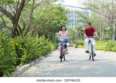 Copy-spaced image of sporty seniors riding bicycles in the park