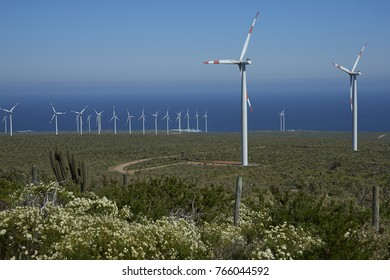 Coquimbo Region, Chile - September 4, 2017: Wind farm on the coast of Chile along the Pan American Highway.