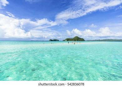 corak reef in rock island