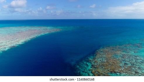 coral in aerial view in the pacific