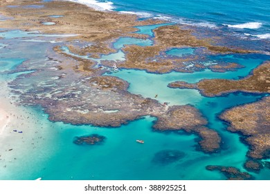 coral coast / aerial photo in Porto de Galinhas / aerial landscape