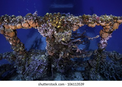 Coral growth on the USCG Duane in Key Largo, Florida. An intentionally sunken shipwreck in the 1980's in the John Pennekamp State Park. With a blue water background and fish swimming around the wreck.