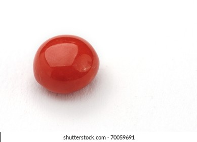 coral Jewel isolated against a white background