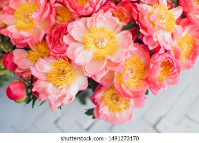 Peony Flower Color Images Stock Photos Vectors Shutterstock