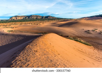 coral pink sand dunes in the early morning