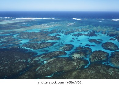 The coral reef in Abrolhos group, Geraldton, Western Australia.