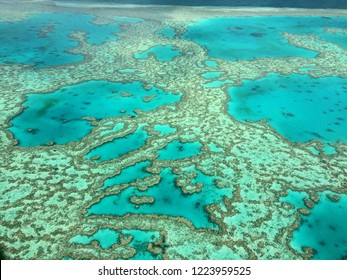 Coral reef, Australia