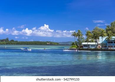 coral reef in koror island