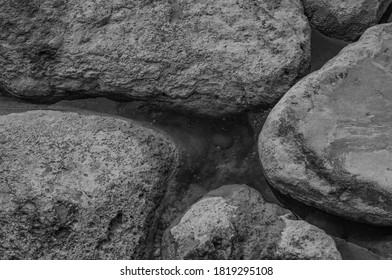 Coral Reef at Low Tide in Waikiki.  Coral boulders exposed during a lunar low tide for use as background for a nature advertisement.