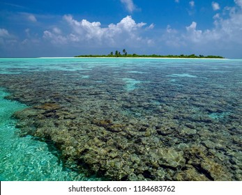 Coral reef near a small island in South Ari Atoll in the Maldives.