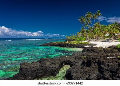Coral reef on south side of Upolu, Samoa Islands.