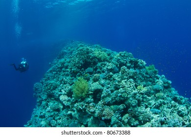 coral reef saddle of the Blue Hole with technical diver