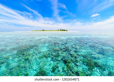 Coral reef tropical caribbean sea, turquoise blue water. Indonesia Sulawesi Wakatobi National Park. Top travel tourist destination, best diving snorkeling.