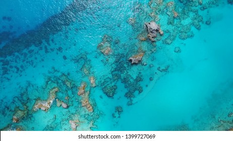 Coral reefs off the coast of Bermuda, clear water of the Atlantic and amazing landscapes