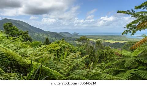 Coral Sea Daintree rainforest tropical Queensland