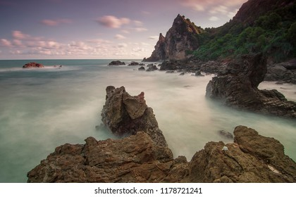 coral watu lumbung south coast of the island of Java Indonesia