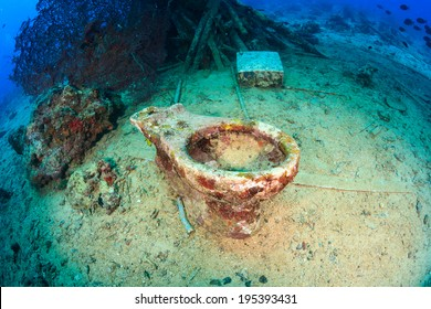 A coral-encrusted abandoned ceramic toilet on the seabed, deep underwater