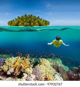 Corals, diver and palm island - half underwater shoot