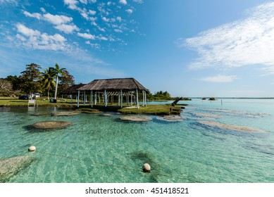 corals and pavilion at laguna of bacalar