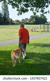 Corby, U.K., June 29, 2019 - a man from back, walking his dog outdoors in the park