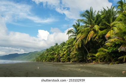 Corcovado National Park - beach view, Osa Peninsula - Costa Rica