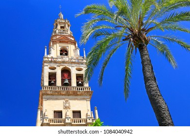 Cordoba bell tower of Cathedral of Our Lady of the Assumption, Spain