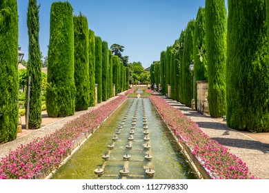Cordoba, Spain - June 20, 2017: Tall trees and fountain in The jardines, royal garden of the Alcazar de los Reyes Cristianos, Cordoba, Spain, Europe, Andalucia