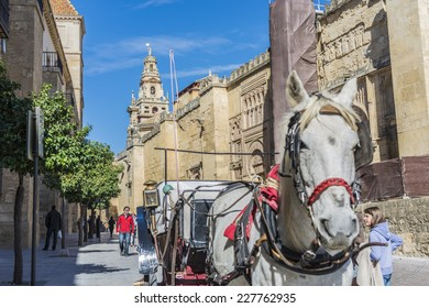 CORDOBA, SPAIN - OCTOBER 30, 2013: The Mosque Cathedral of Cordoba is a medieval Islamic mosque converted into a Roman Catholic Christian cathedral in the Spanish city of Cordoba, Andalusia.