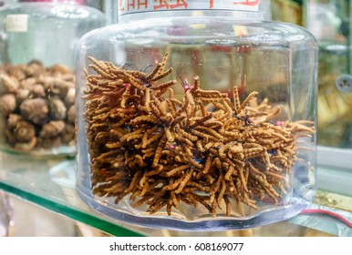 Cordyceps is considered to be medicinal mushroom in classical Asian pharmacologies, such as that of traditional Chinese and Tibetan medicines. Dried cordyceps in glass jar at the shopwindow