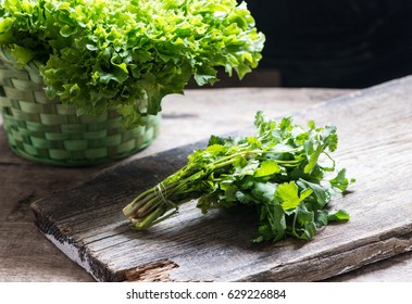 Coriander bunch and lettuce