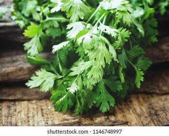 Coriander on wood background