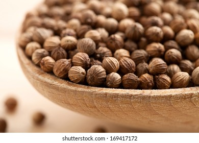Coriander Seeds in a bowl