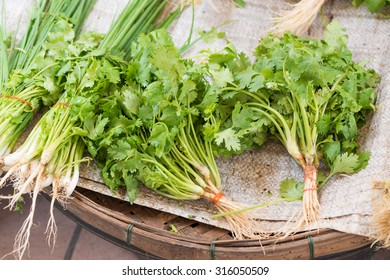 coriander and Spring onion at fresh-food market in thailand