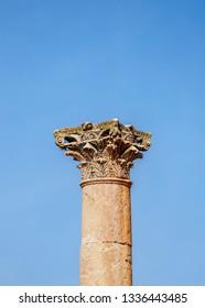 Corinthium column, Jerash, Jerash Governorate, Jordan