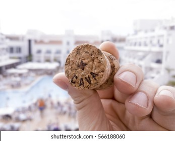 A cork of a bottle of cava, with a pool in the background. What's better than opening a nice bottle of cava and enjoying a warm day at the pool?