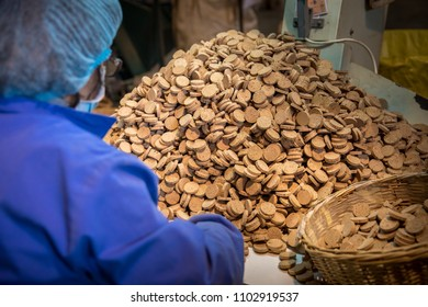 Cork factory in the south of Portugal. Manufacturing cork stoppers for wine bottles.