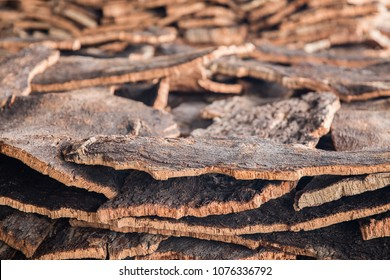 Cork/bark getting ready for processing after the harvesting of the cork tree. It will soon be wine corks and other products.