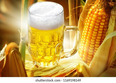 Corn beer, glass of beer and corn