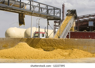Corn Byproduct produced by Ethanol fermentation process