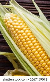 corn cob on dark wooden rustic background