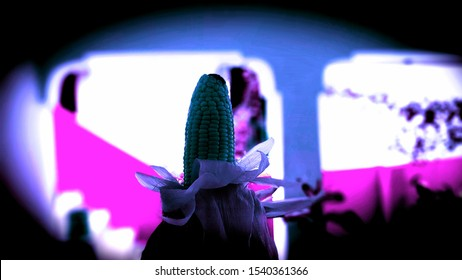 The corn in dico light
