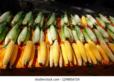 Corn at the farmers market in Arles, France