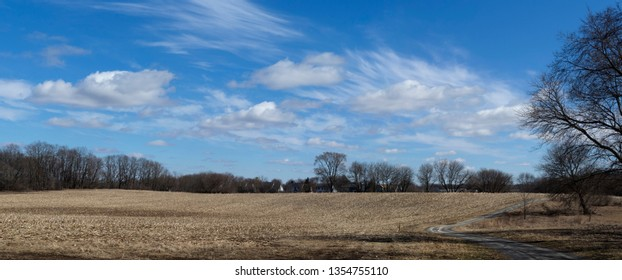 Corn field west of Chicago suburbs