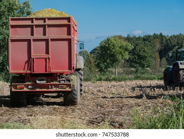 Corn harvest, corn forage harvester in action, harvest truck with tractor